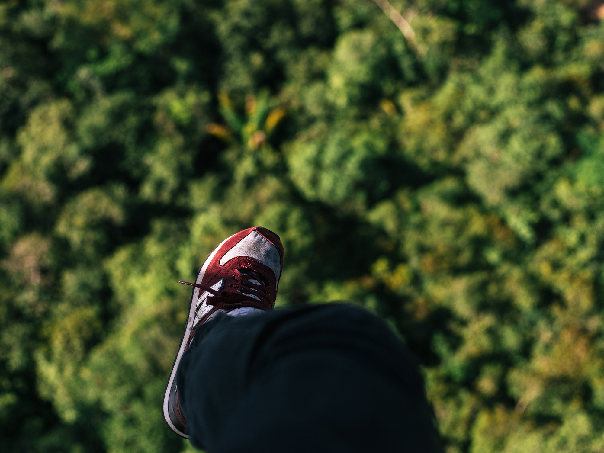 Hanging out over the rainforest.