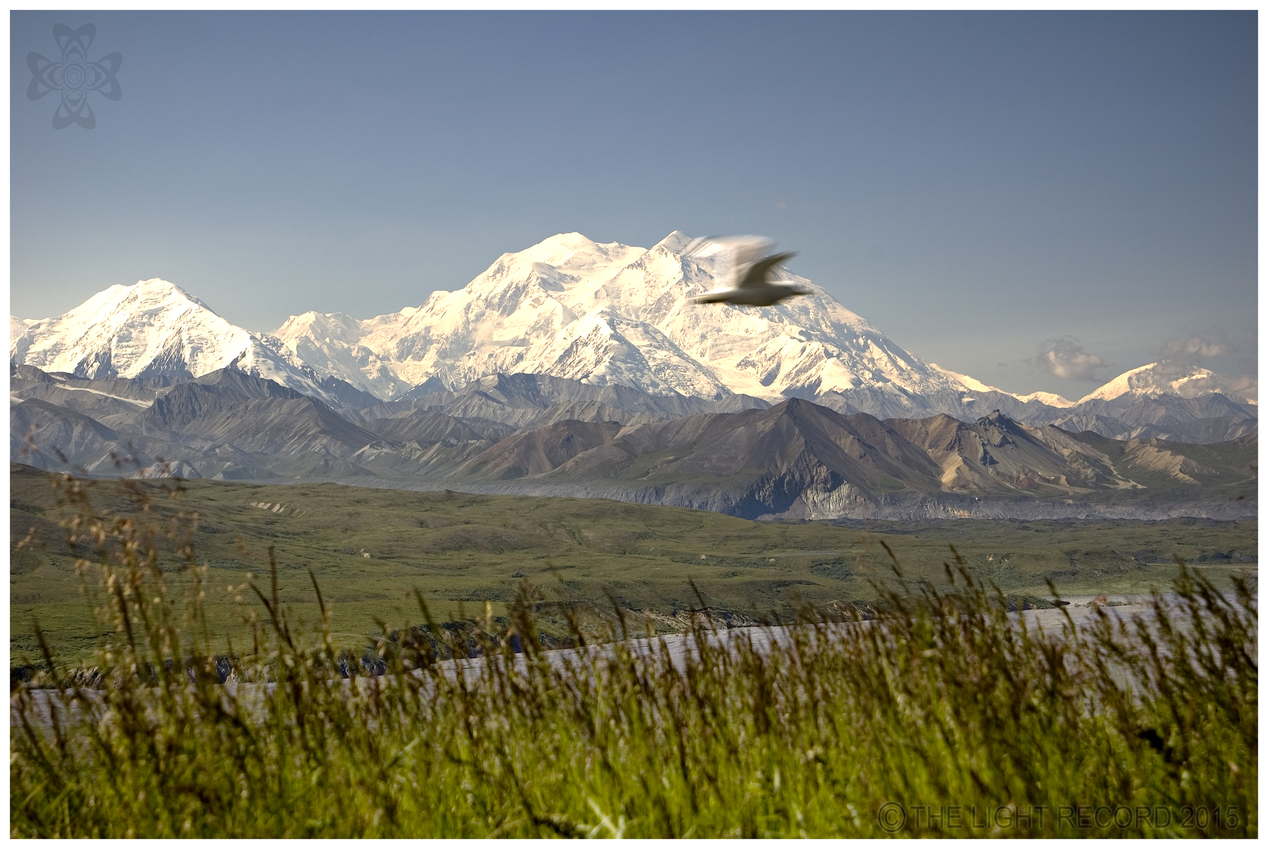 Denali Clearly from Eileson.jpg