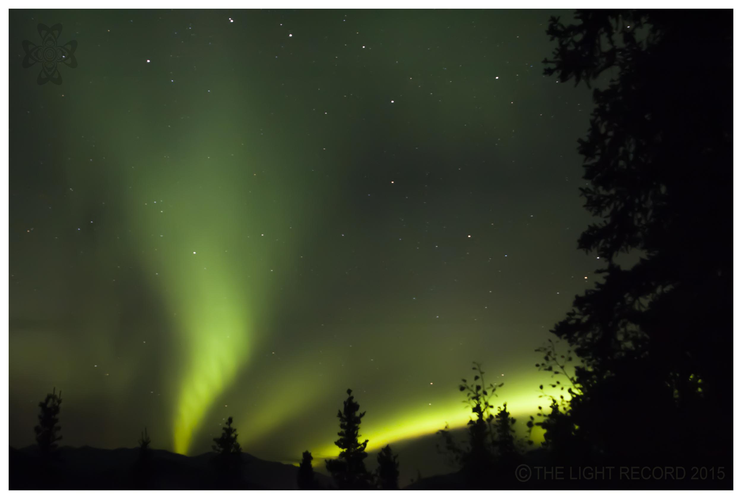 New Aurora.jpg