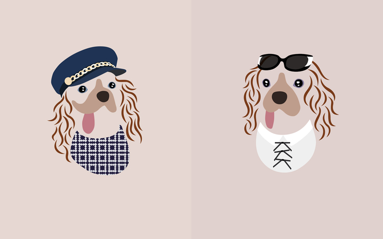 Toast the King Charles Cavalier is wearing (from left to right)  Cap:Eugenia Kim Marina Cap    Shirt:Mother of Pearl Paget Shirt  Sunglasses:Thierry Lasry Flattery Sunglasses  Shirt:Sonia Rykiel Georgette / Leather Button Up Shirt