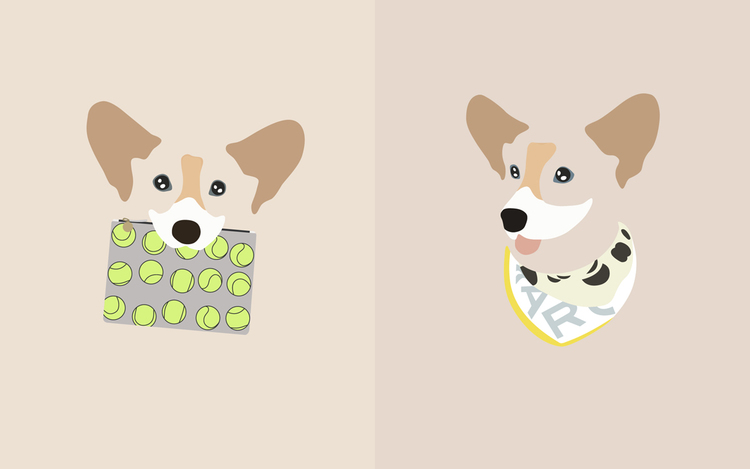 Chompers the Corgi is wearing: (from left to right)  Clutch:Clare Vivier Tennis Print Flat Clutch  Scarf:Marc Jacobs Blurred Dot Scarf