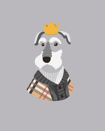 'So exciting Sum, the clothing and the simpler crown look great together. I think this would be his ultimate dream outfit!' - @obeytheschnauzer