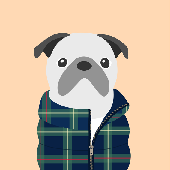 woofmodels-dogsofinstagram-puff-jacket-blue-check.jpg