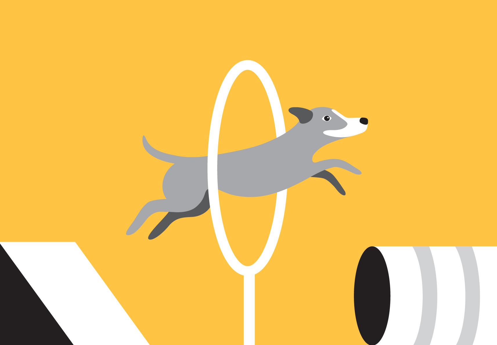woofmodels-san-francisco-spca-dog-agility.jpg