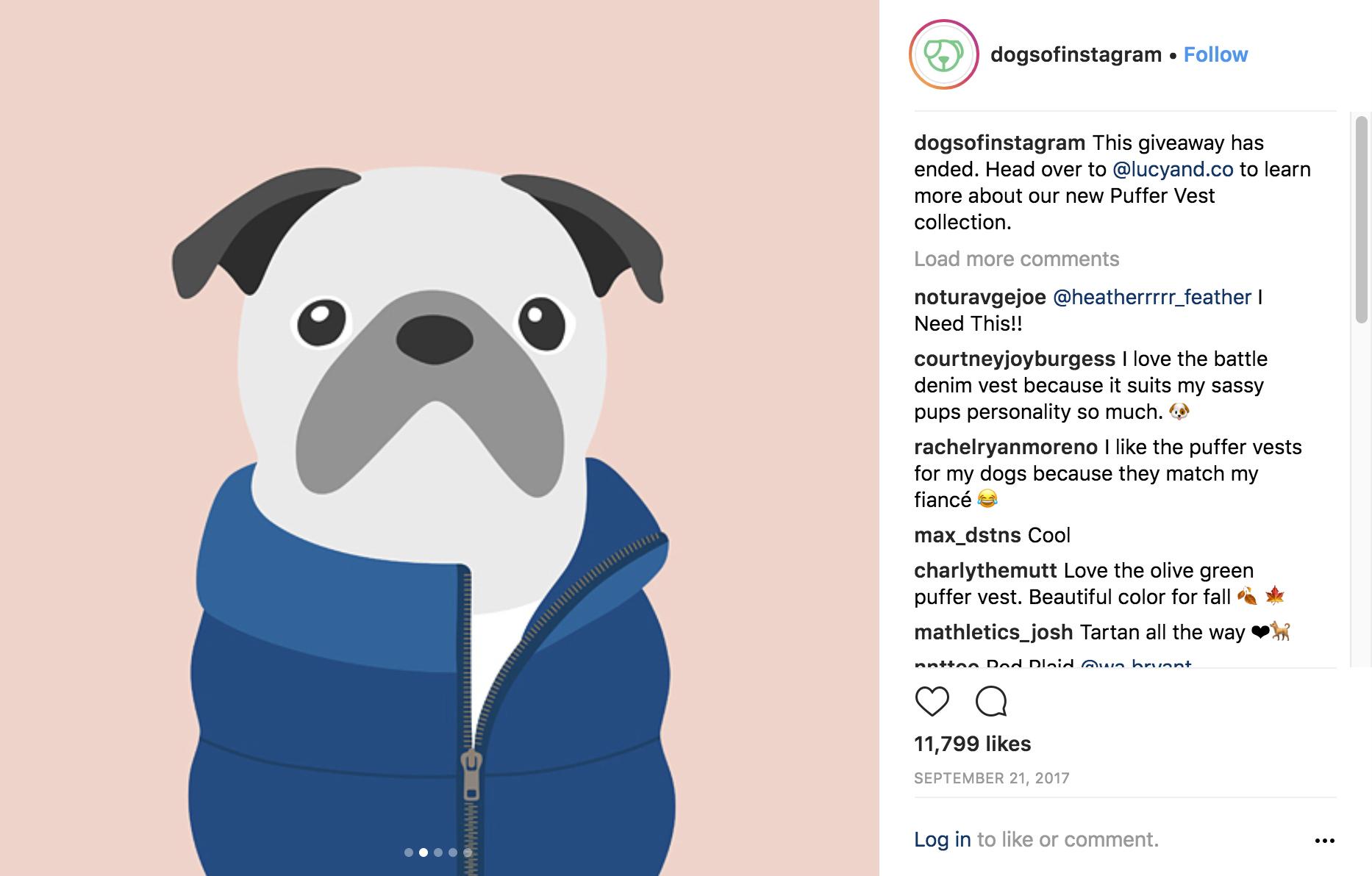 woofmodels-dogsofinstagram-lucynco-instagram.jpg