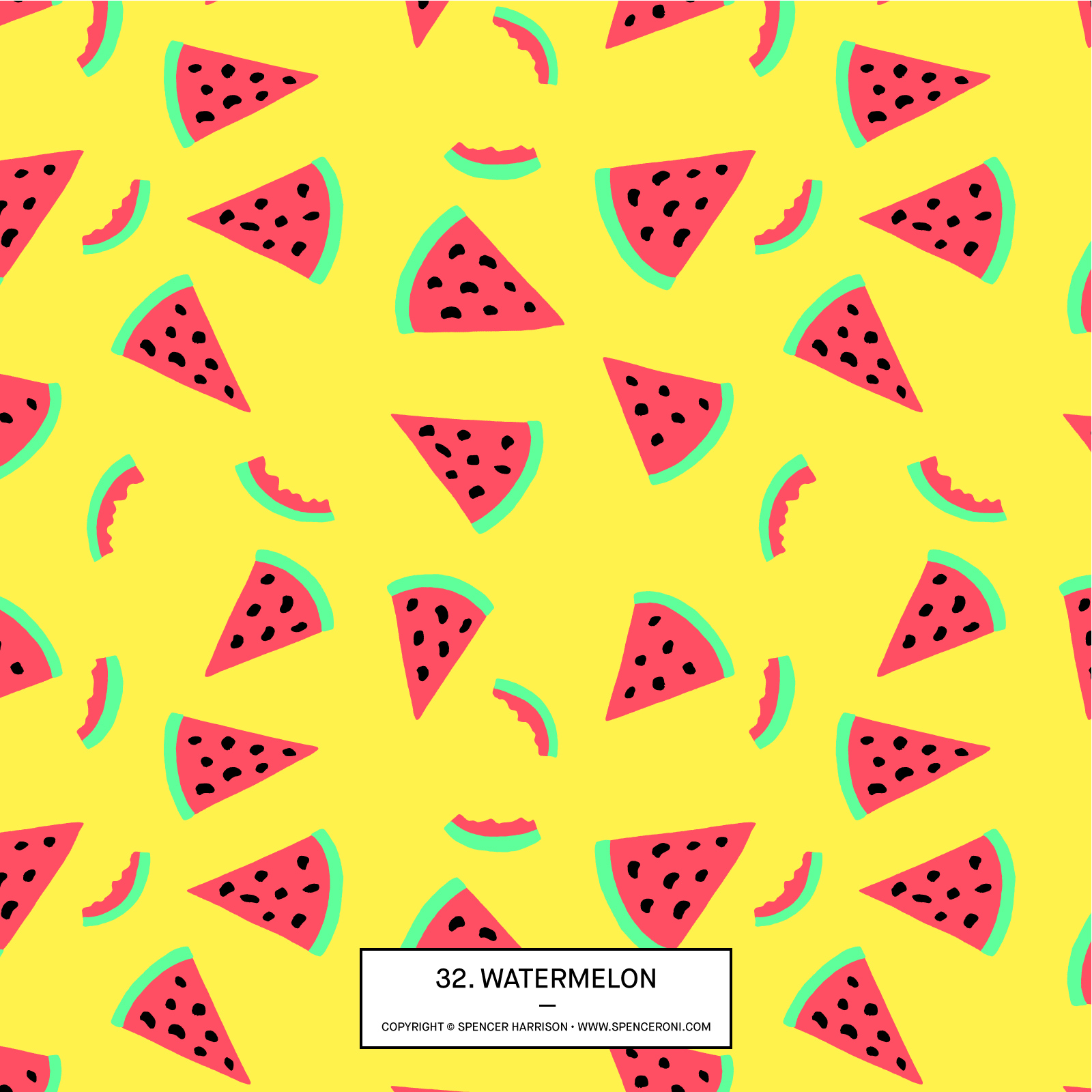 Spenceroni-Pattern-32.jpg