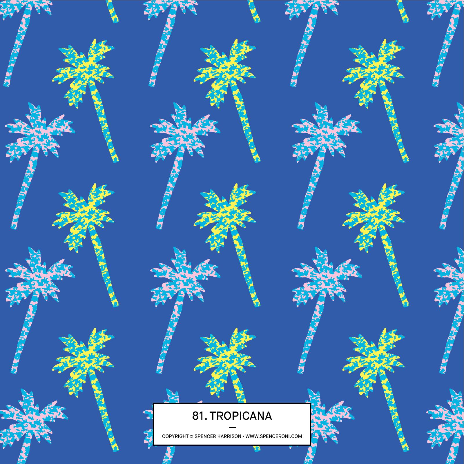Spenceroni-Pattern-81.jpg