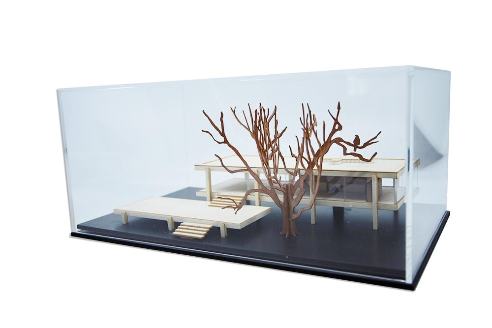 Farnsworth House + acrylic cover