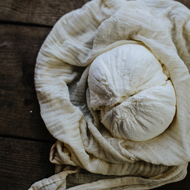 intro to CHeese Making: The Online Course -