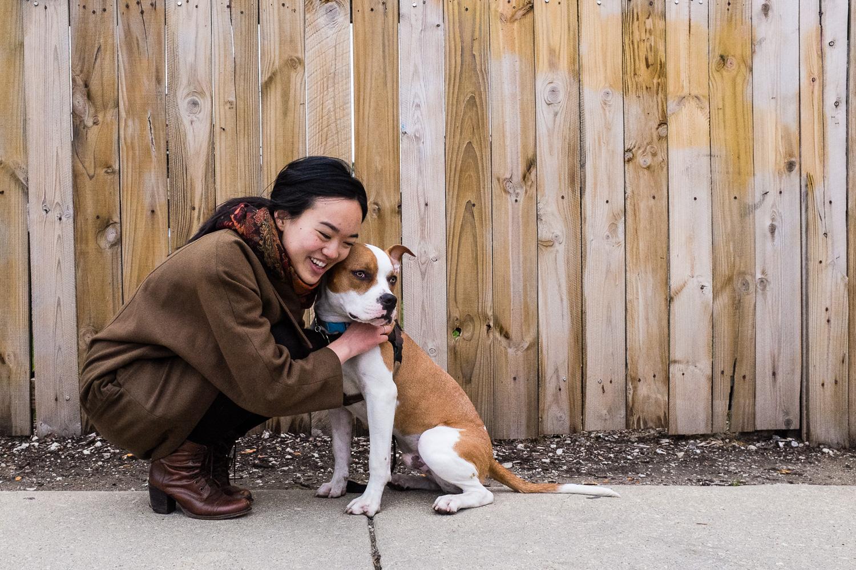 Dog portrait along wooden fence