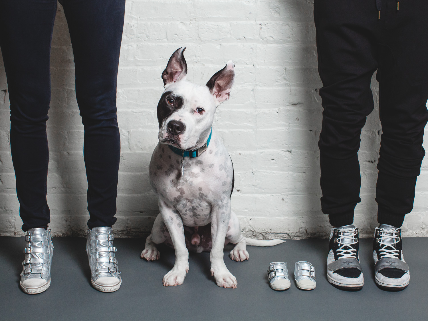 Pit Mix With His Family