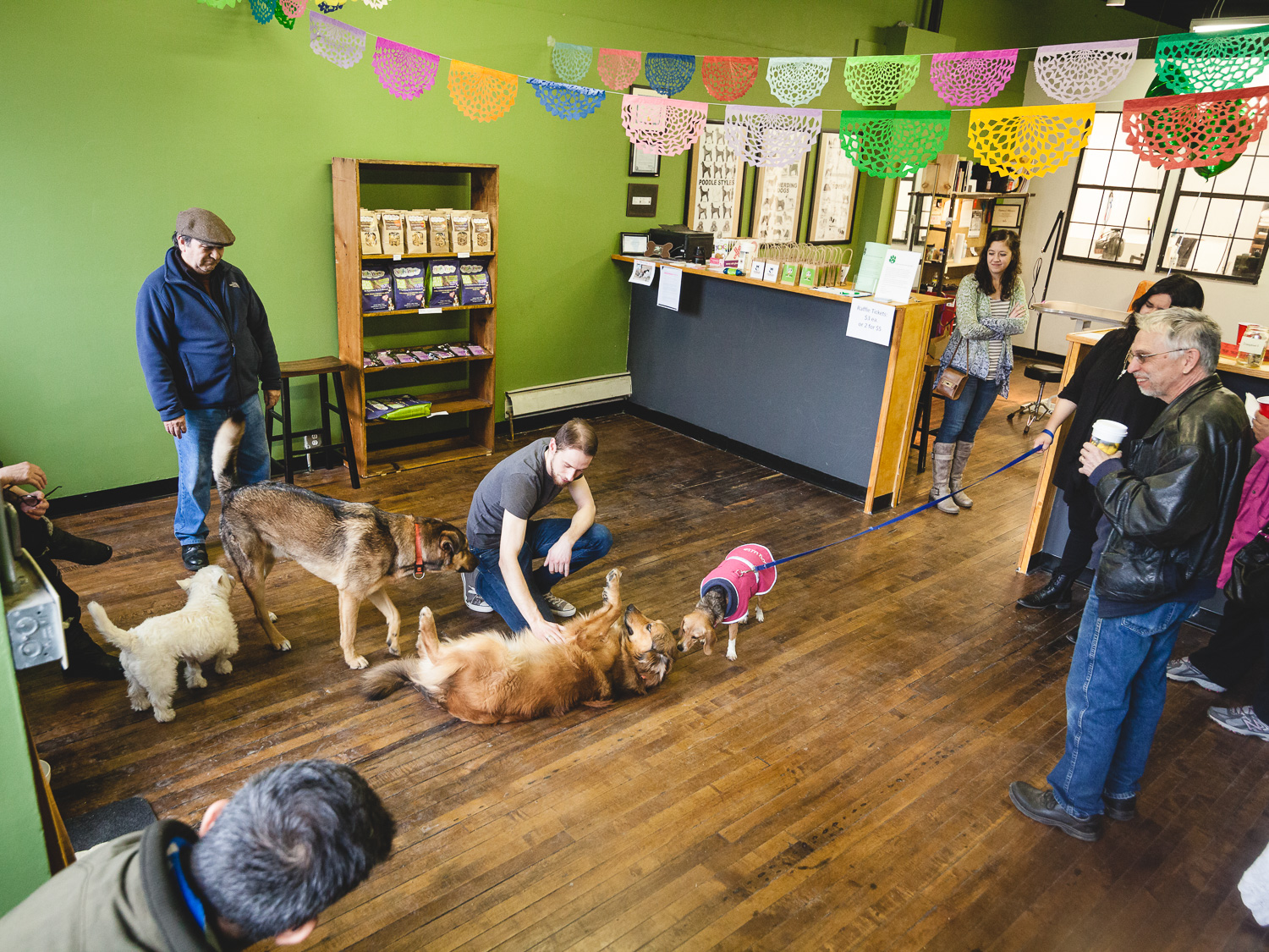 Grand Opening, Heart of Chicago Grooming