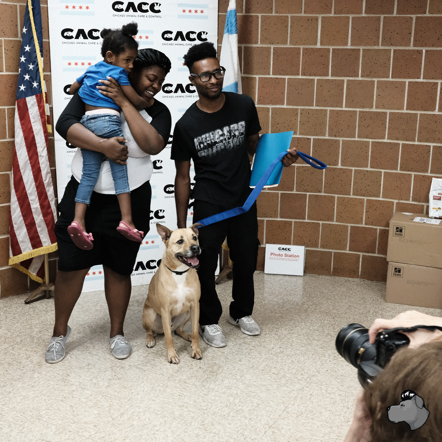 Clear the Shelters at CACC, AMSTAPHY