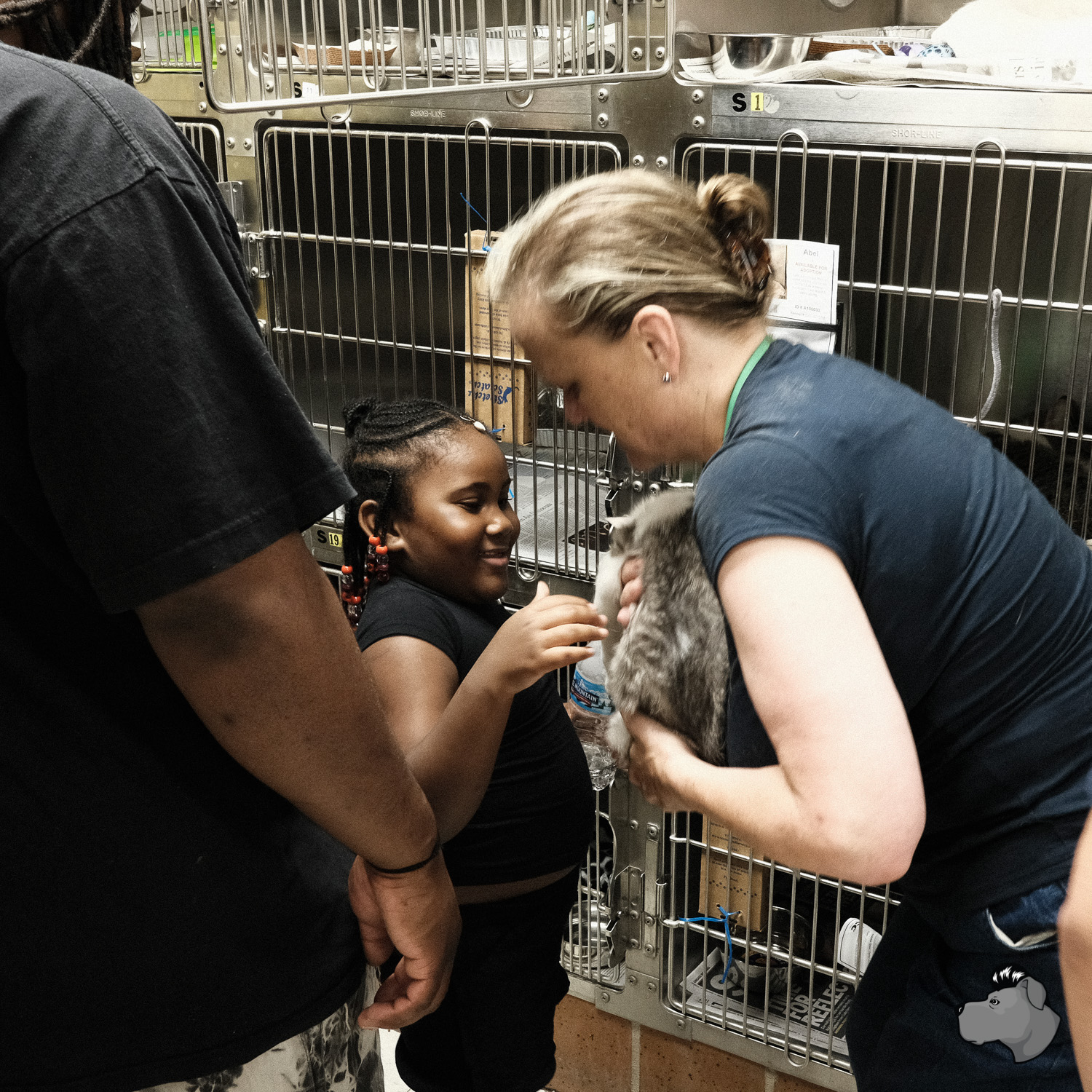 clear-the-shelters-chicago-00009.jpg