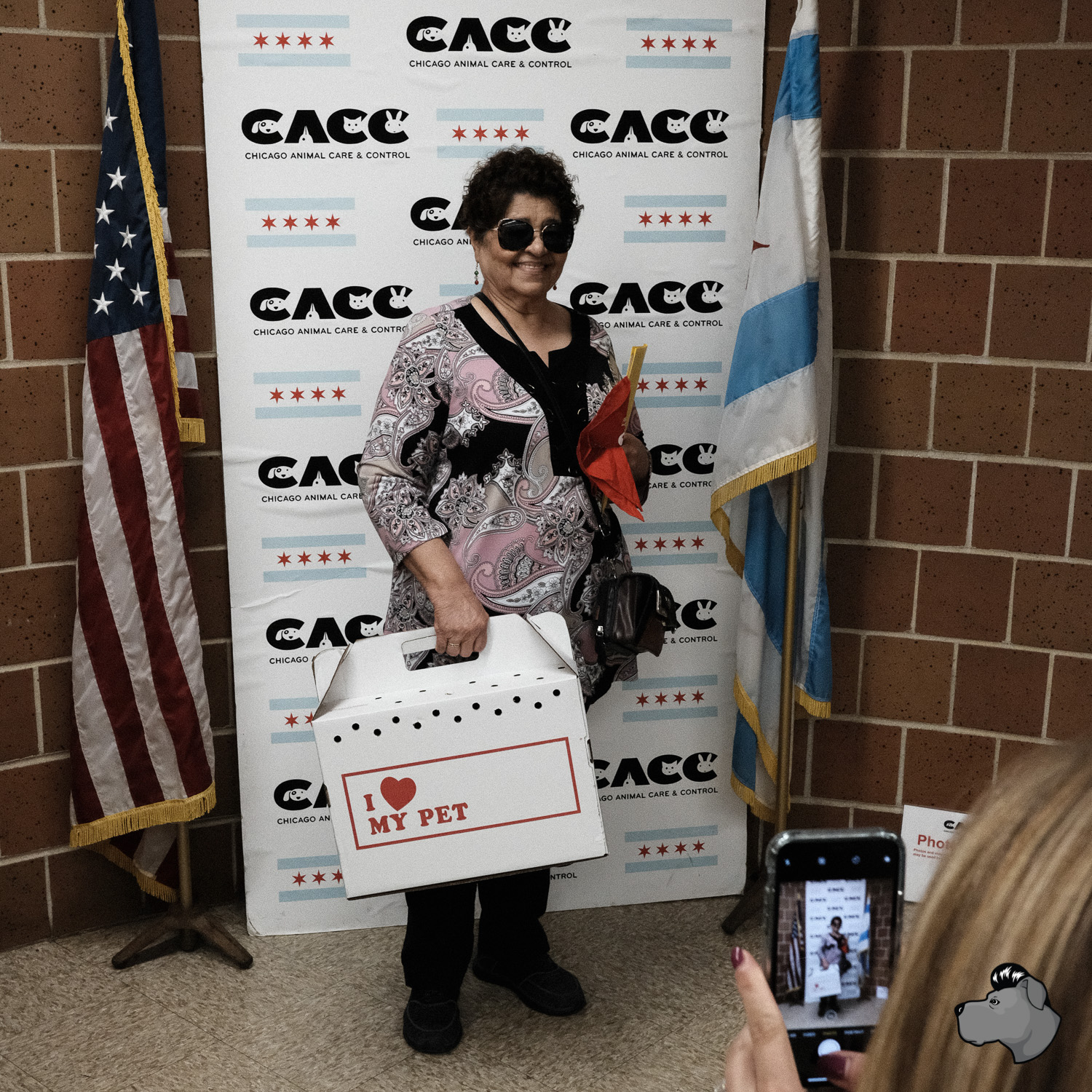 clear-the-shelters-chicago-00013.jpg