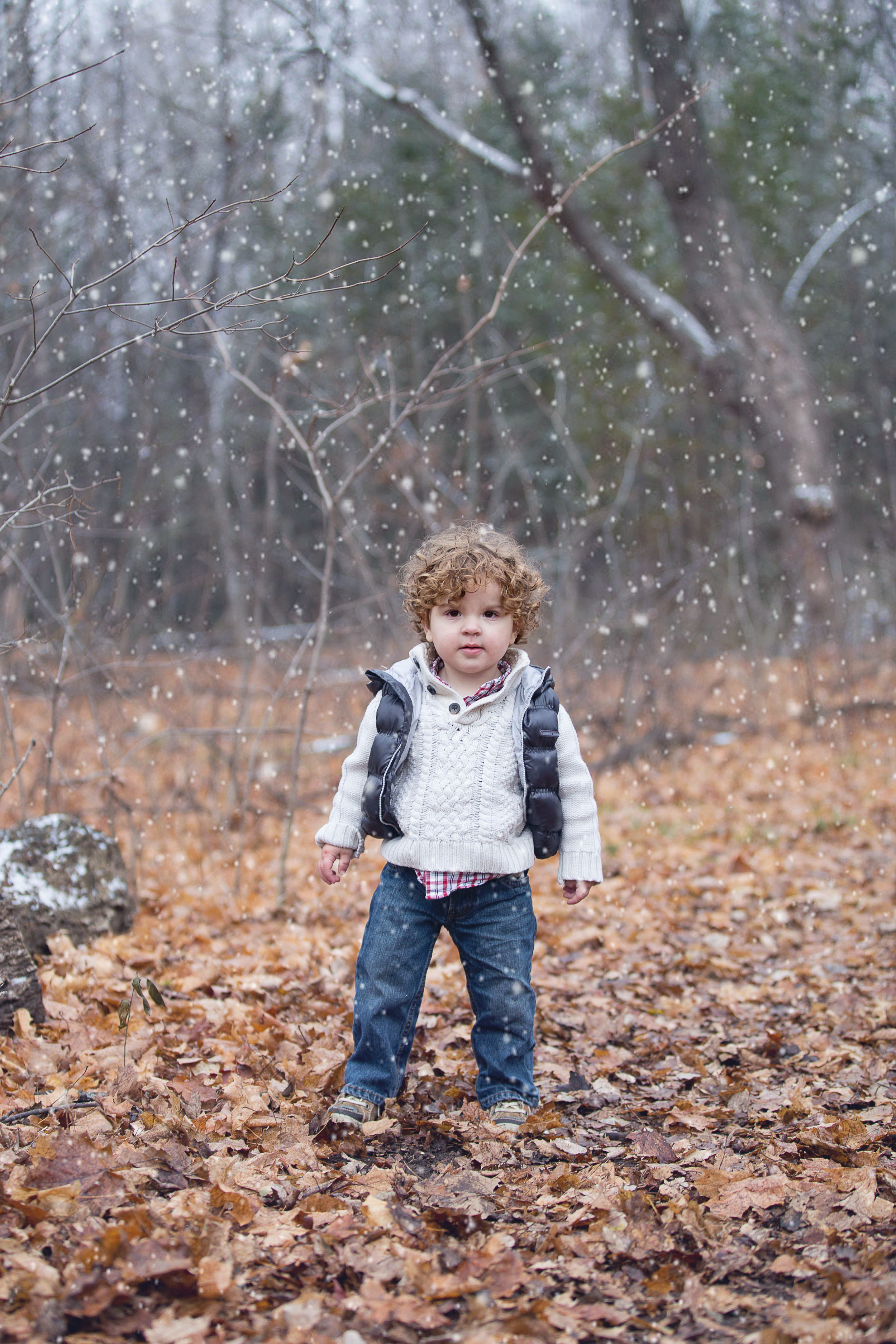 IMG_1734_set_snowfull.jpg