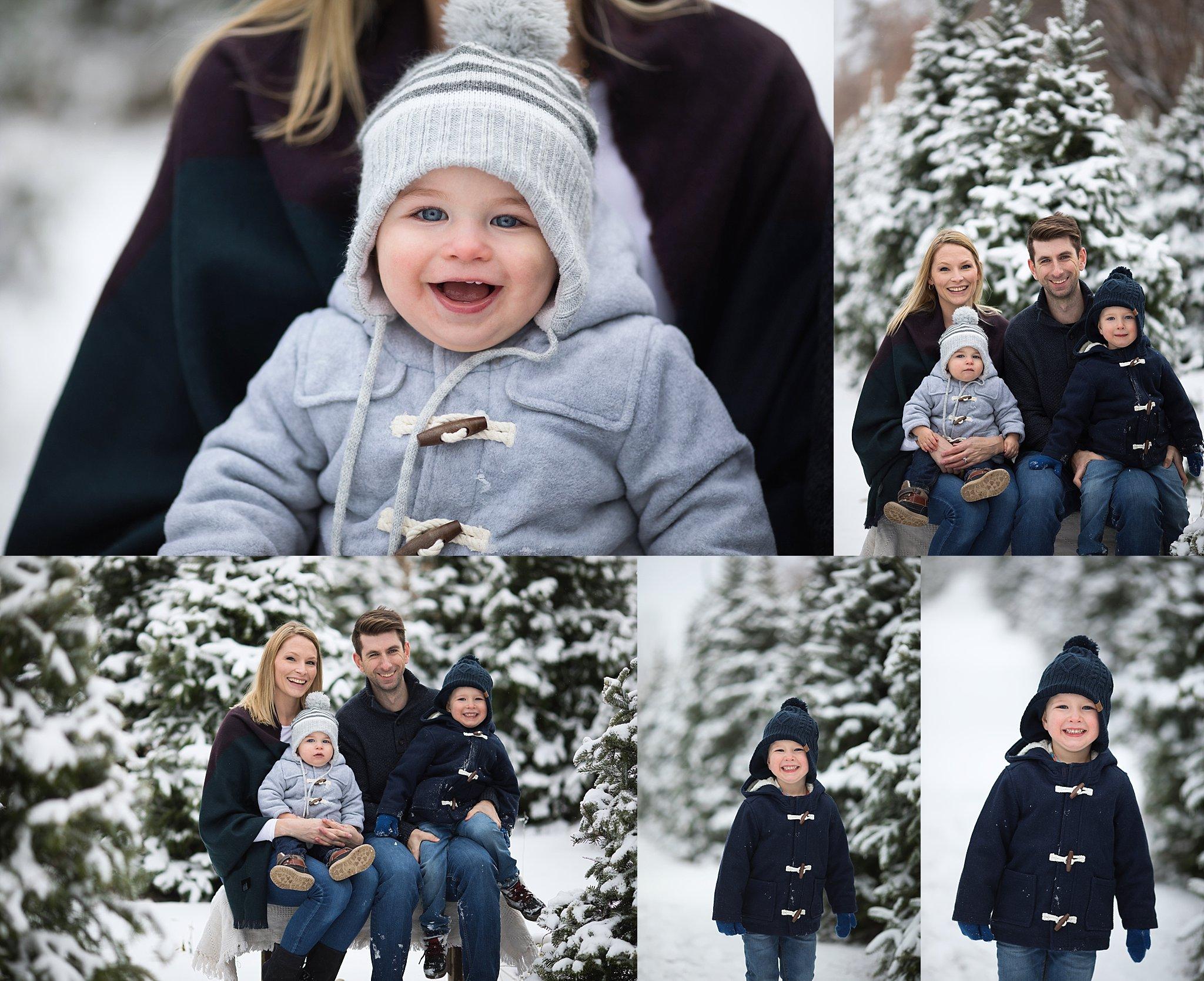 family portraits tree farm