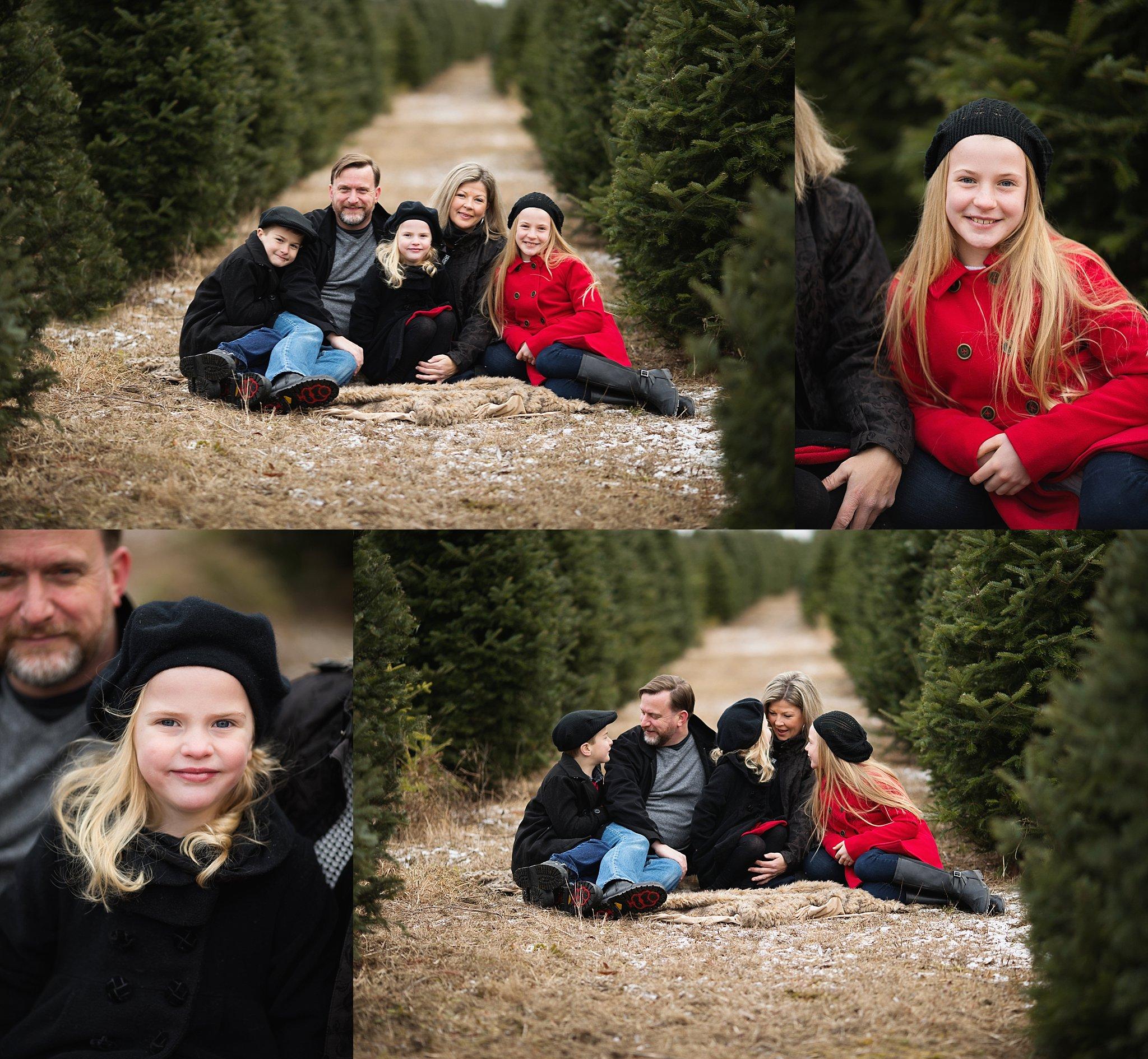 festive family portraits ottawa