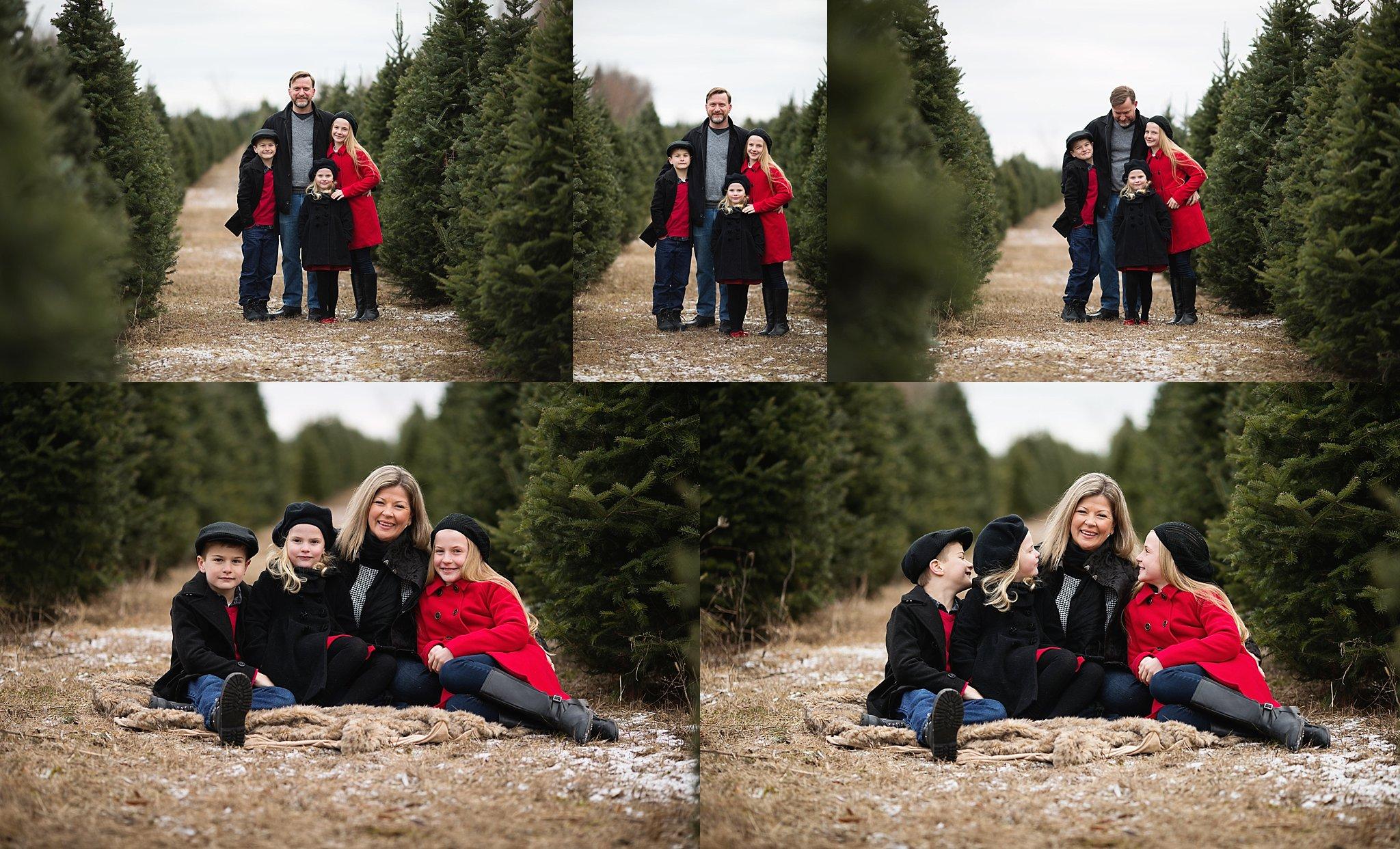 family photos ottawa tree farm