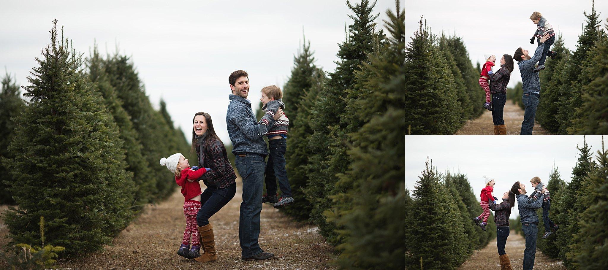 family fun tree farm