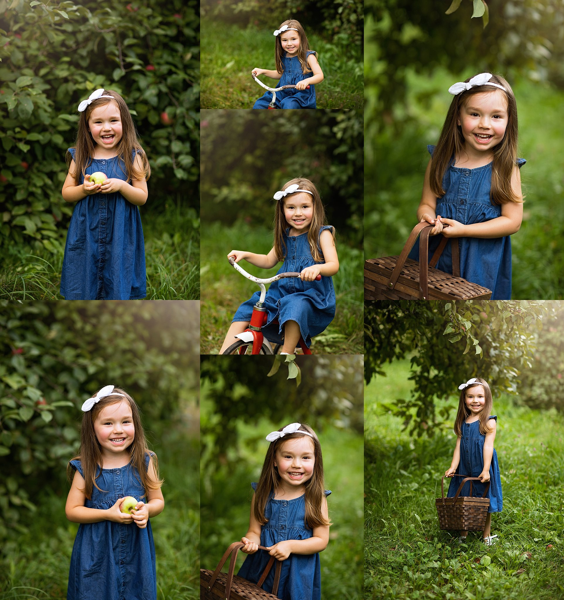 apple orchard photo session
