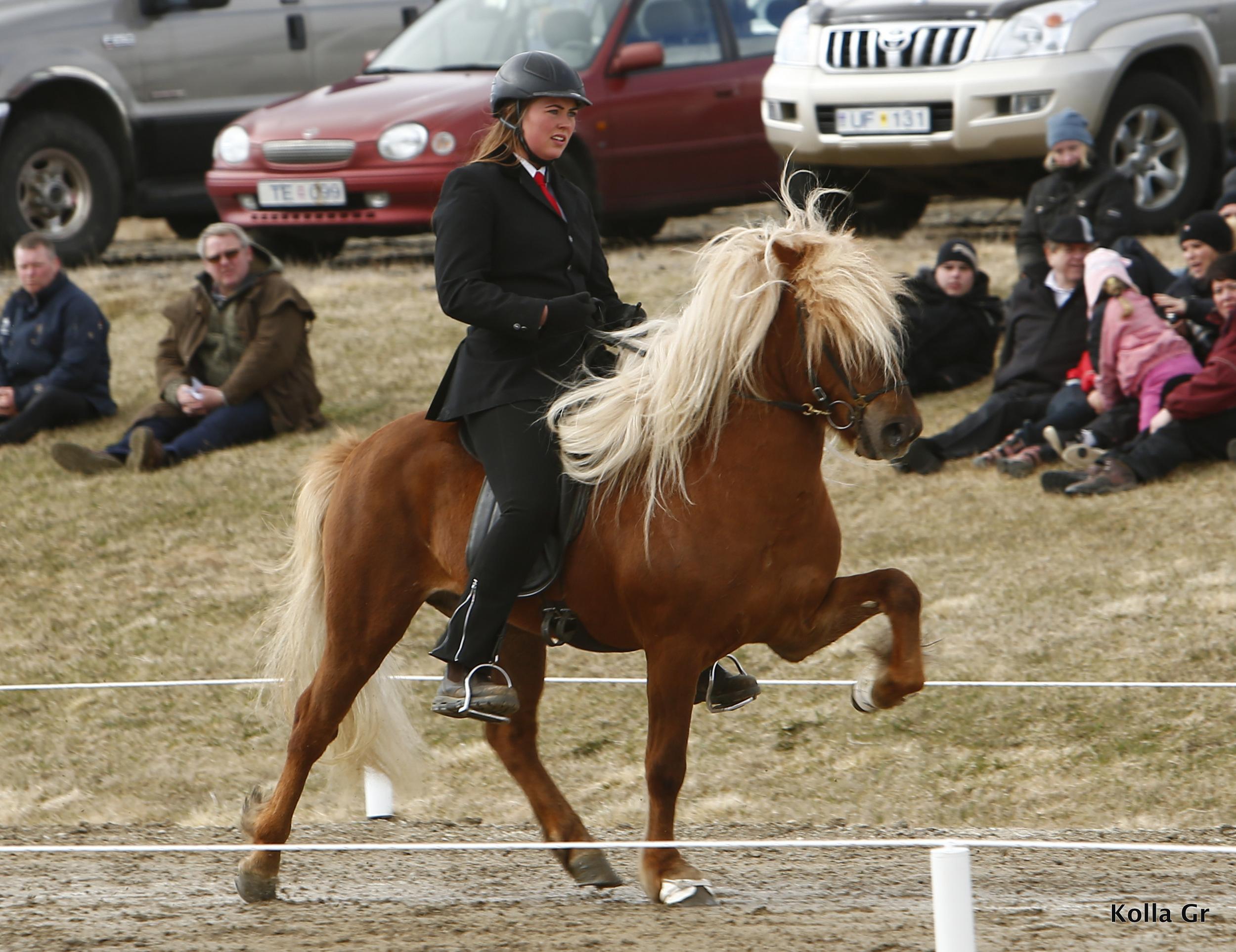 Hekla Katharína riding Jarl frá Árbæjarhjáleigu II