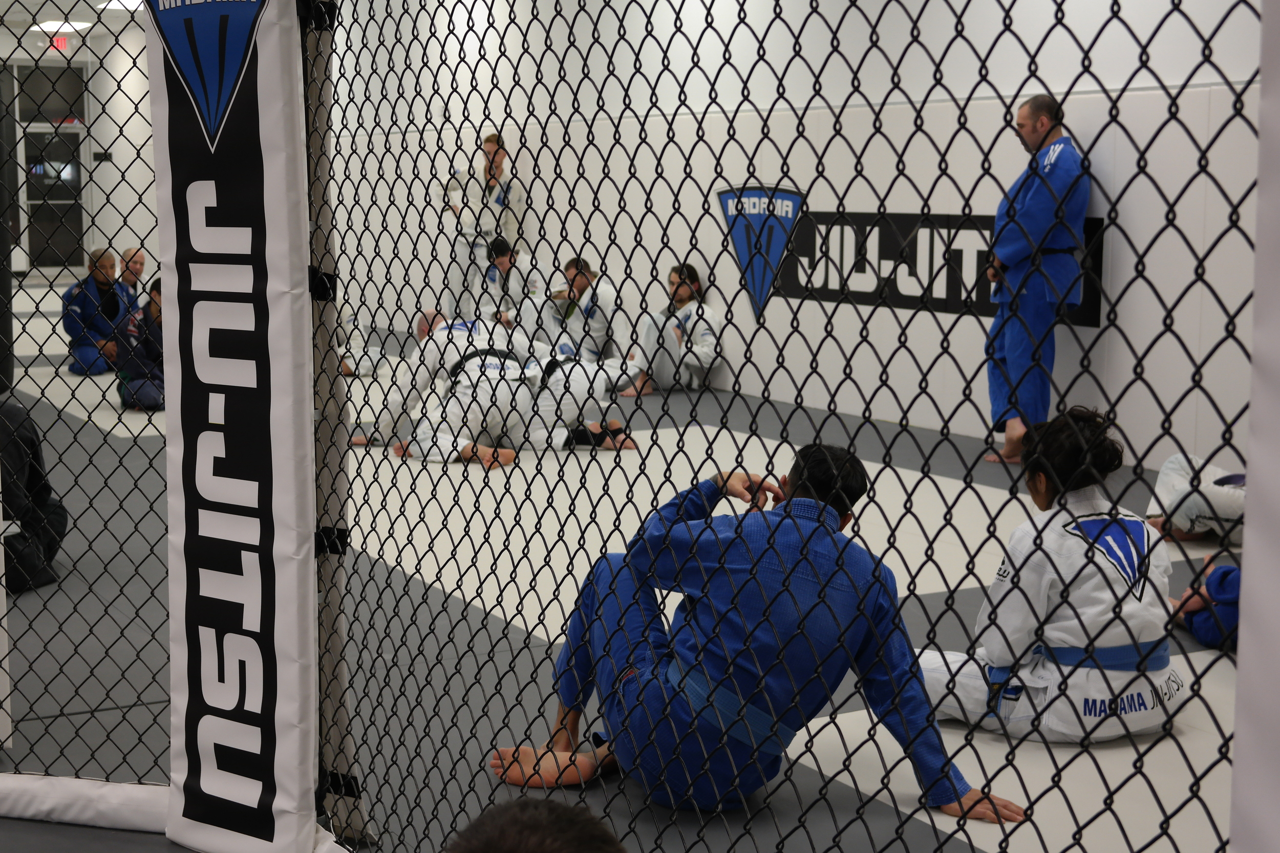A View From Inside the Cage