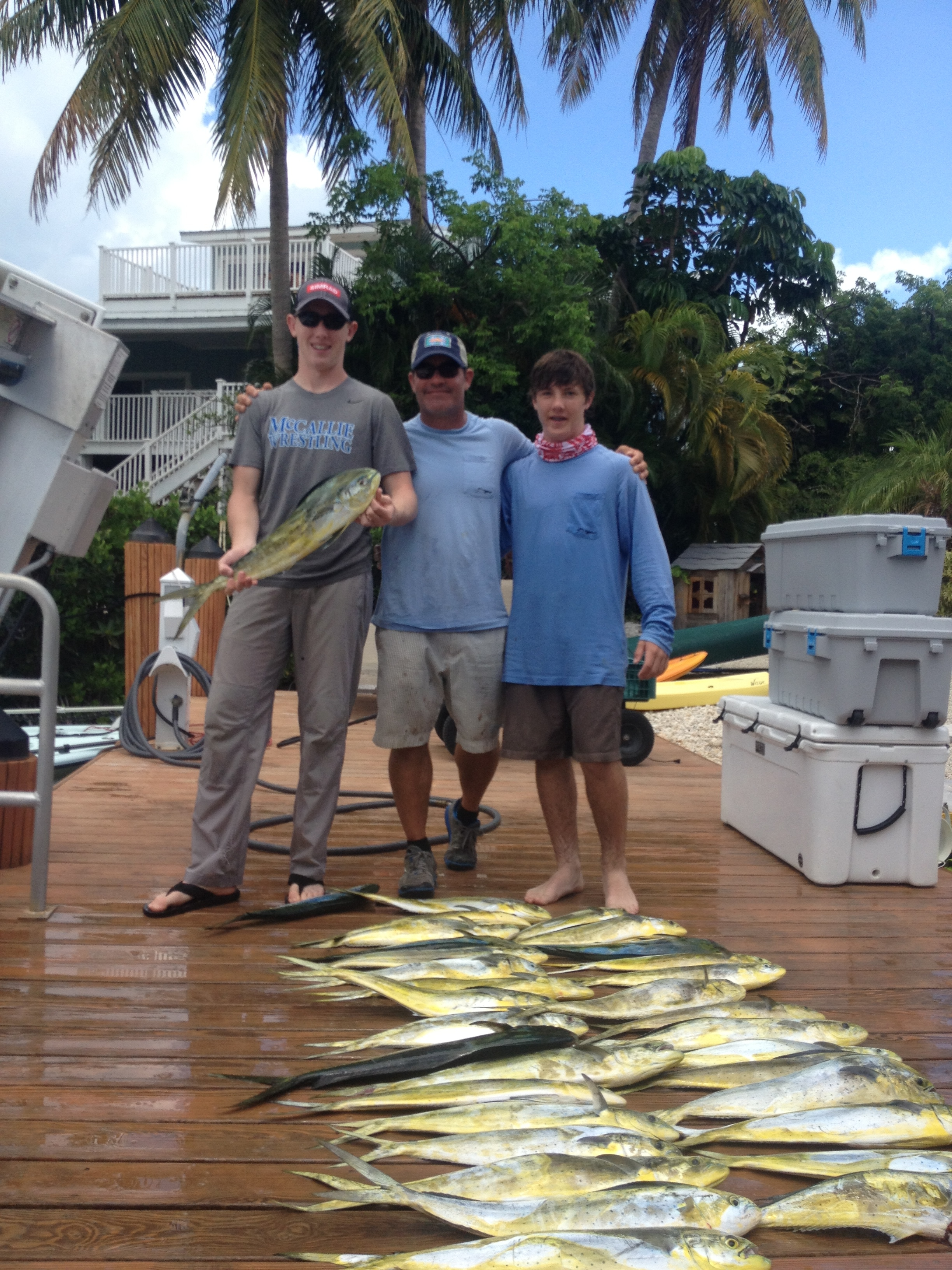 33 free range organic, hook caught dolphin. Can NOT get any better protein source than these!