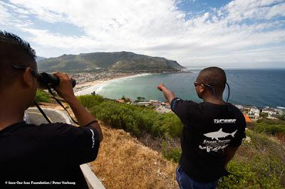 shark+spotters+hillside.jpeg