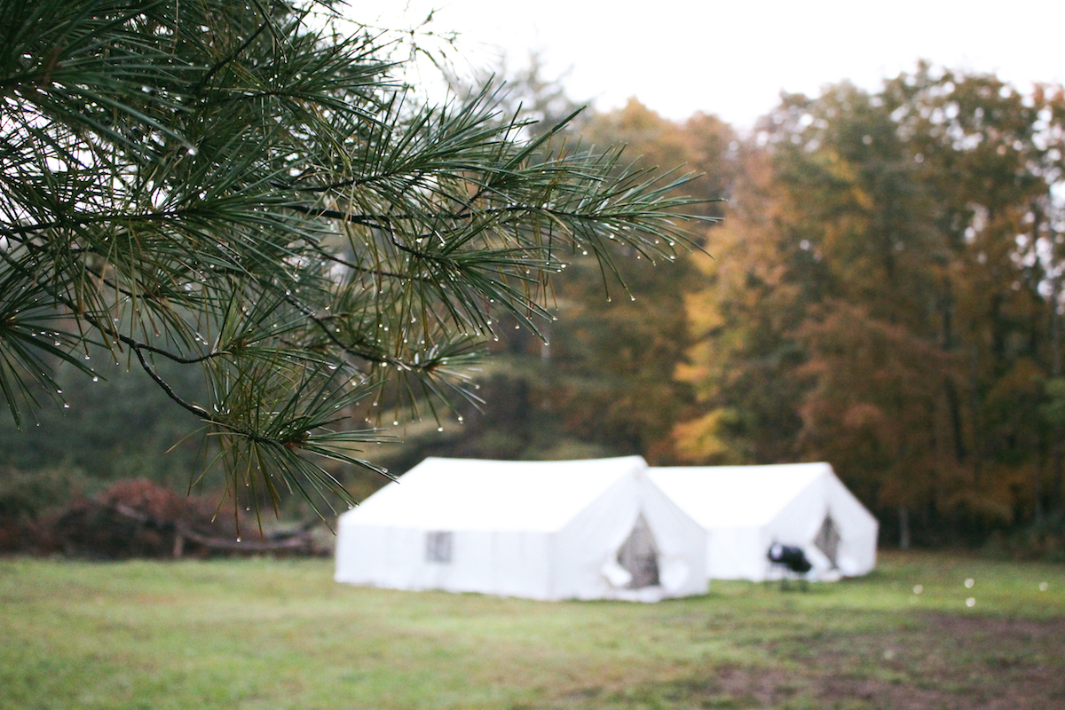 Terravelo Tours, glamping, Woodstock, New York, Upstate New York, camping, autumn