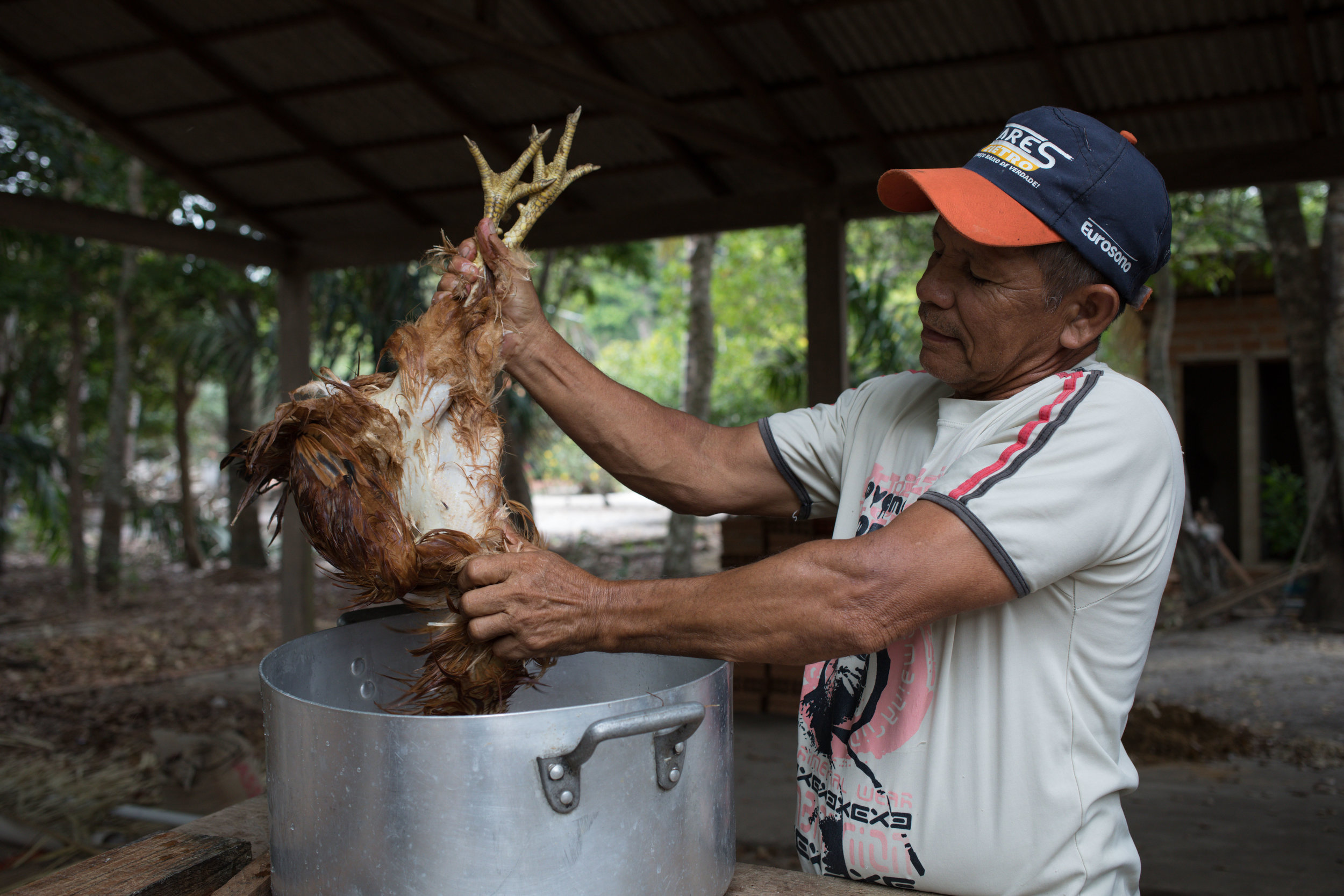 Making lunch in a remote area in Pará, Brazil