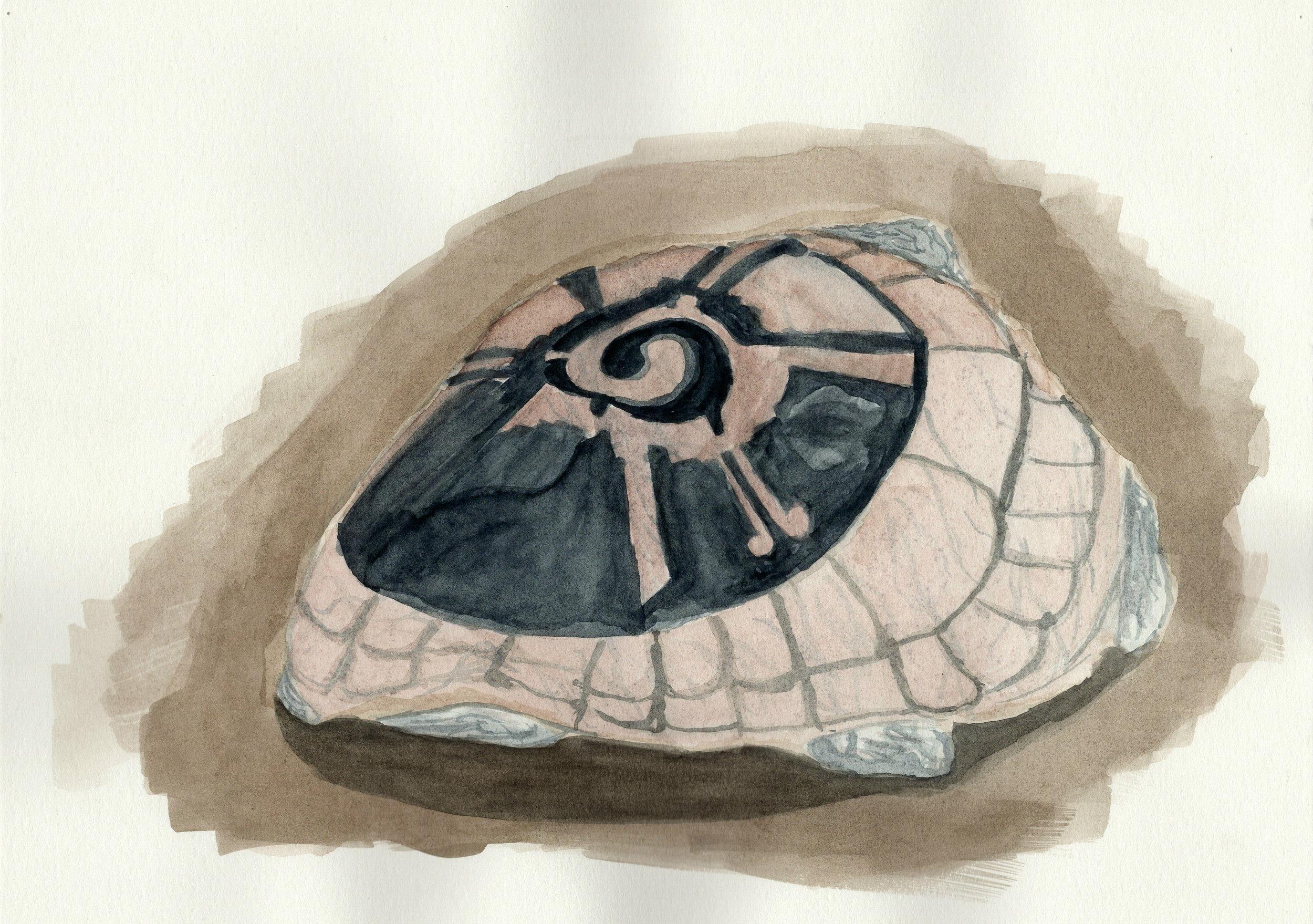 Stone Tortoise