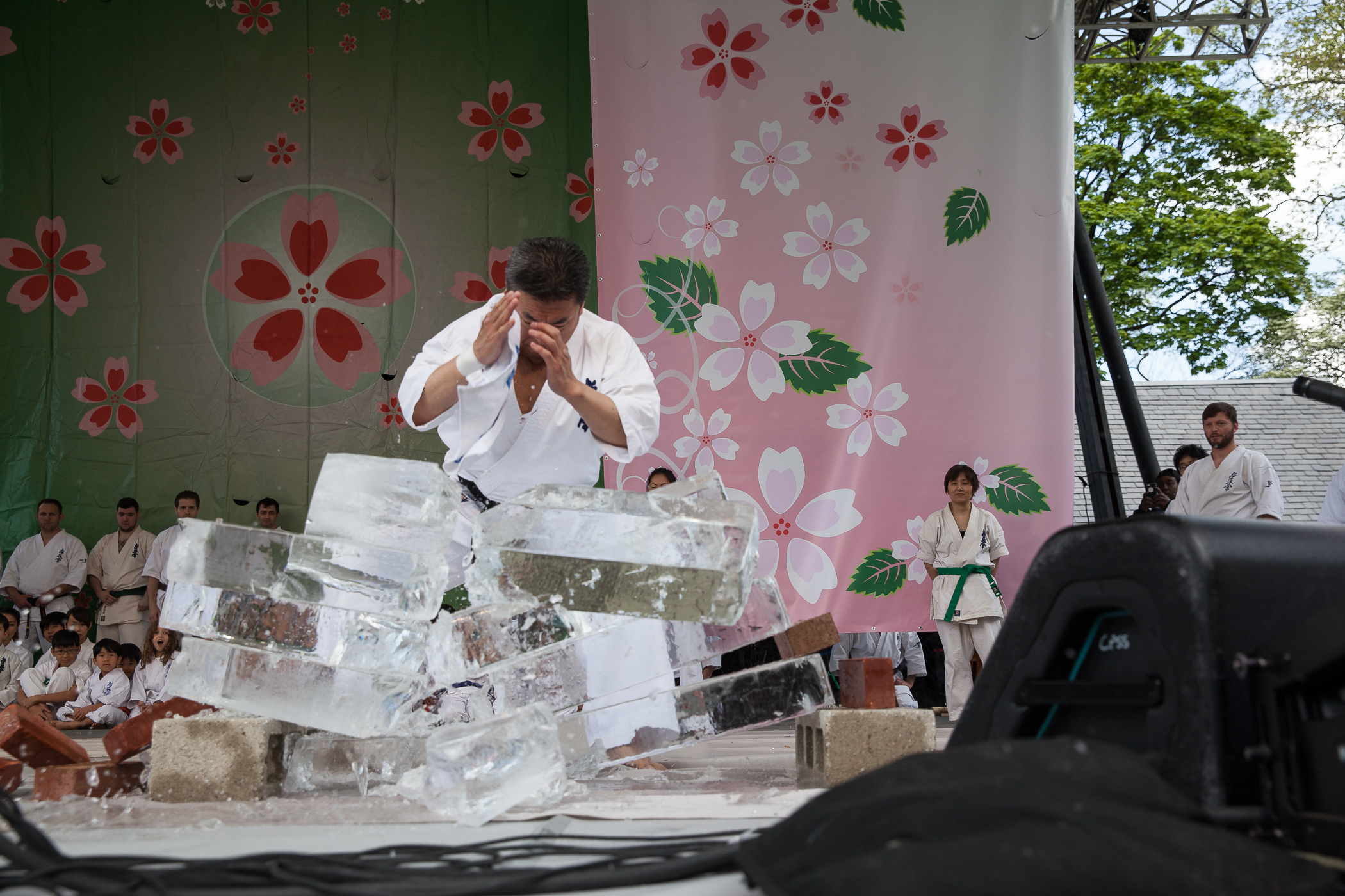 Japan_Day_2016_Mark Doyle-8737.jpg