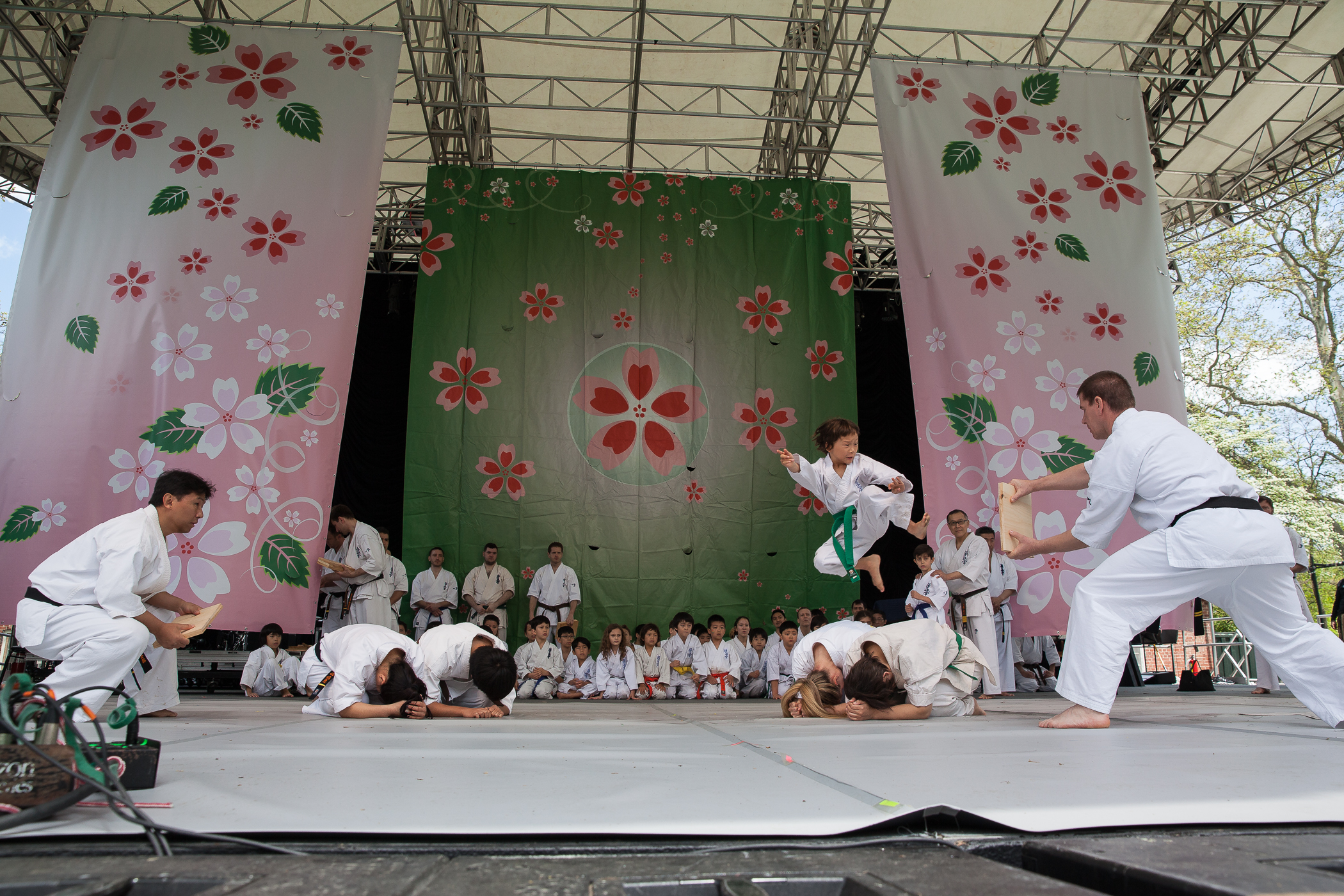 Japan_Day_2016_Mark Doyle-8716.jpg