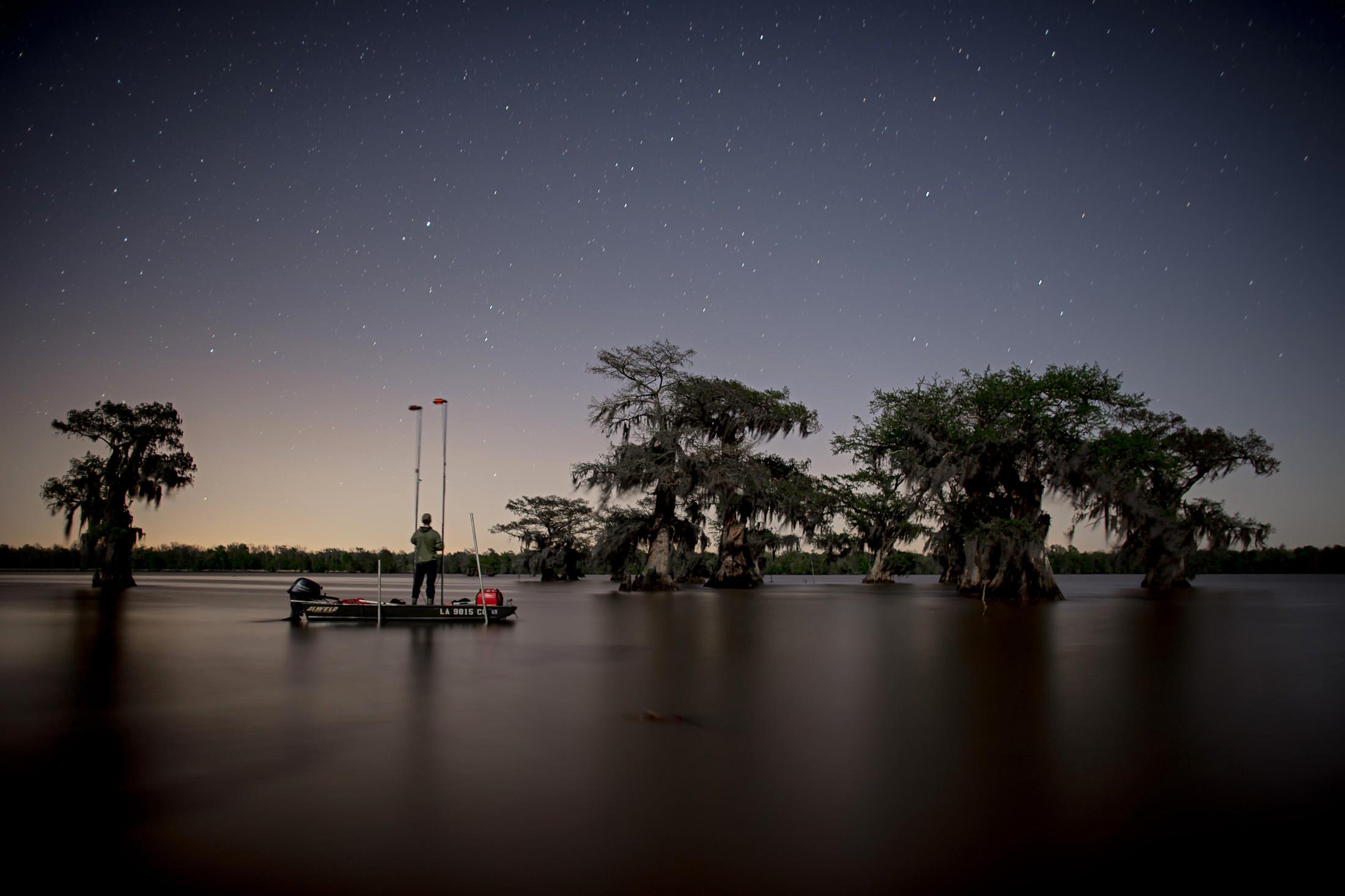 frank_in_swamp.jpg