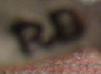 521X-5.jpg