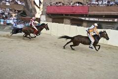 palio-del-vincitore-liocorno-di-siena-5942448.jpg