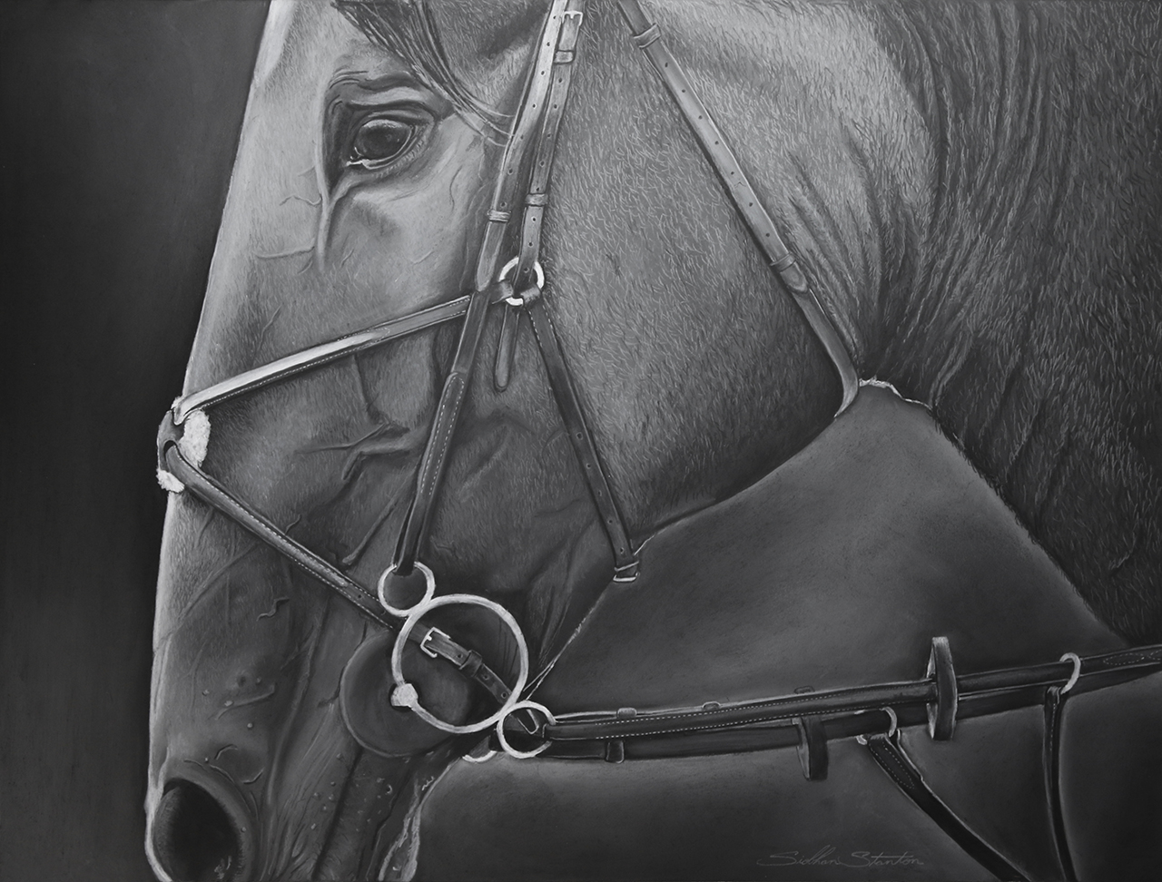Siobhan Stanton - Charcoal Drawing, Hastings-on-Hudson, NY