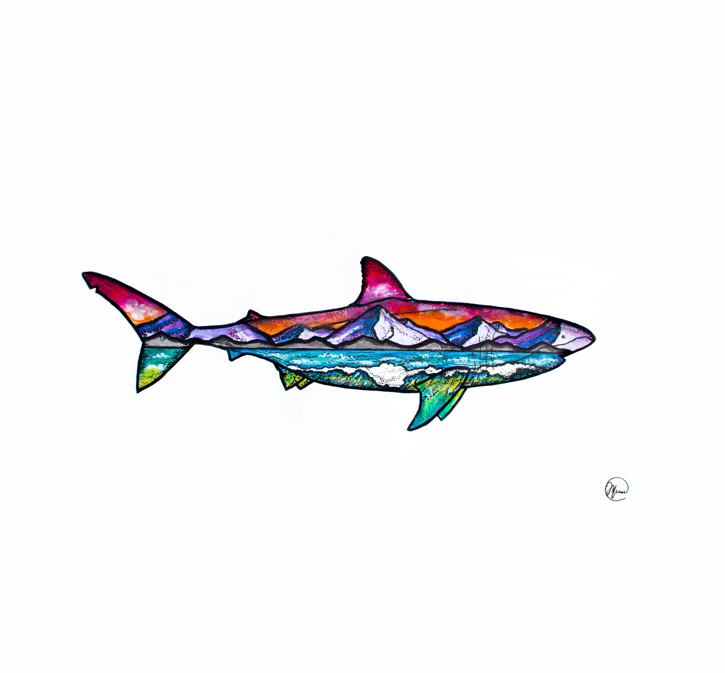 shark illustration watercolor.jpg