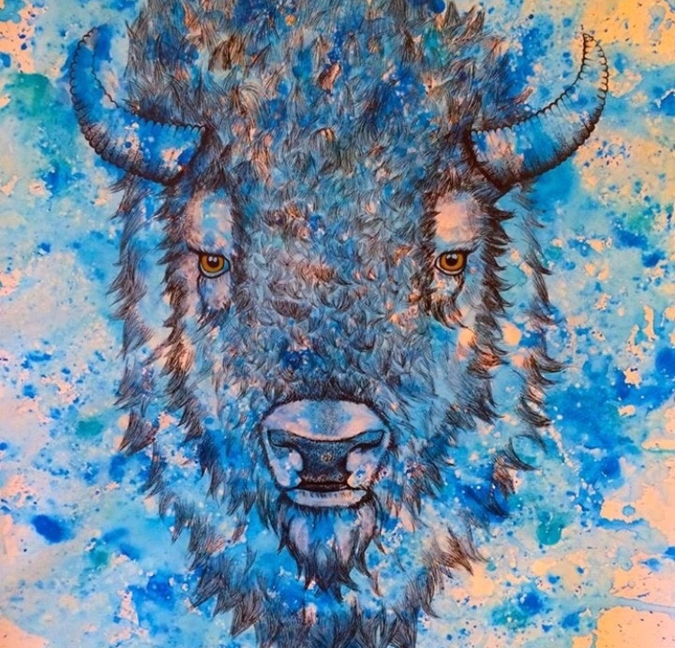 bison illustration watercolor.jpg