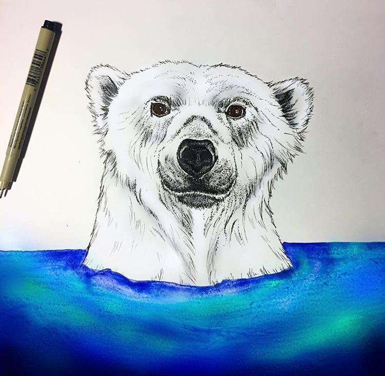 polar bear art.jpg