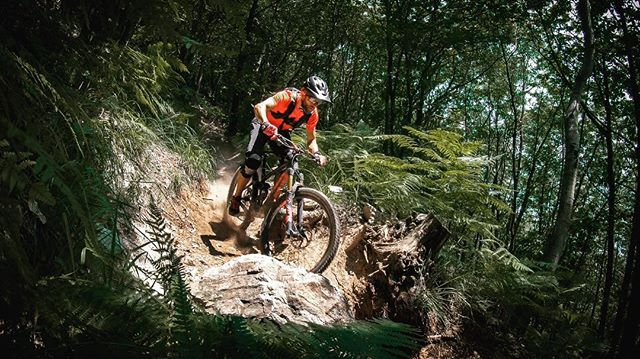 One of my favourite sections on the Cardada trail. 👌 . 📸 @adrianospics . #mountainbike #freeride #mtb #goprohero6 #mtbnation #mtblife #enduromtb #plabtbasedathlete #MountainBiking #mtblove #instamtb #lifebehindbars #alps #mtbswitzerland #enduro #mountainbikinglife #pinkbike #lifeofadventure #liveoutdoors #makemoments #simplyadventure #bikemagazin #dusty #ticino