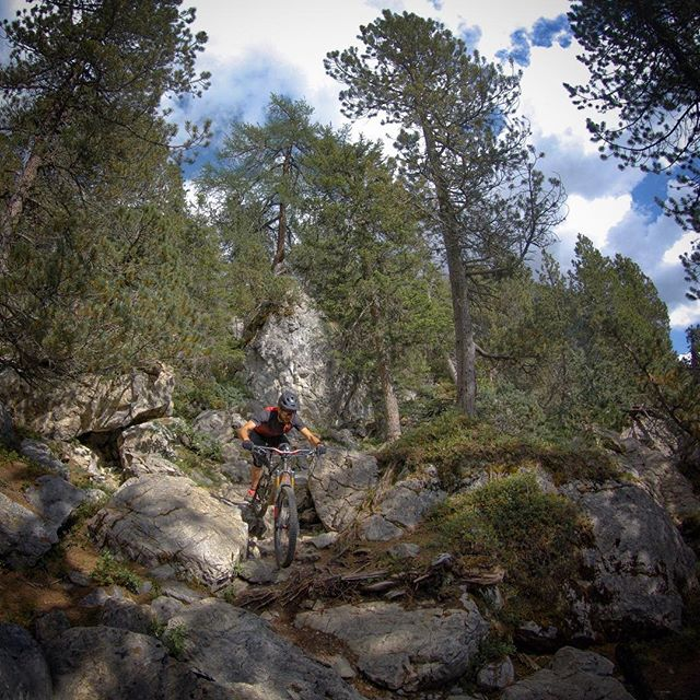Nothing better than a rocky and  technical section in a beautiful forest. 🌲🌲🌲 . . #mountainbike #mtb #singletrail #outdoor #igersmtb #mtbnation #mtblife #feelthealps #enduromtb #MountainBiking #mtblove #instamtb #lifebehindbars #alps #downhill #switzerland #plantbasedathlete #inlovewithswitzerland #graubündenbike #graubünden #lenzerheide