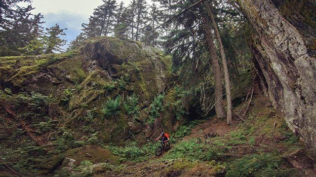 Nothing better than a loamy trail after a rainy day. Check out that scenery! . . #mountainbike #freeride #mtb #singletrail #outdoor #goprohero6 #mtbnation #mtblife #enduromtb #plabtbasedathlete #MountainBiking #mtblove #instamtb #lifebehindbars #alps #mtbswitzerland #enduro #mountainbikinglife #flowtrail #lifeofadventure #liveoutdoors #makemoments #simplyadventure #bikemagazin #adventuretillwedie #welivetoexplore #neverstopexploring #wallis #loam