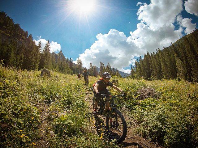 Chased through the bushes and over roots. ... With @karinschnetzer, @fridakorberg and Stephan Fröhlicher ... #mountainbike #freeride #mtb #singletrail #outdoor #goprohero6 #mtbnation #mtblife #enduromtb #plantbasedathlete #MountainBiking #mtblove #instamtb #lifebehindbars #mtbswitzerland #enduro #mountainbikinglife #flowtrail #lifeofadventure #liveoutdoors #makemoments #simplyadventure #bikemagazin #adventuretillwedie #welivetoexplore #neverstopexploring #arosa #lenzerheide #girlsridetoo #totalmtb