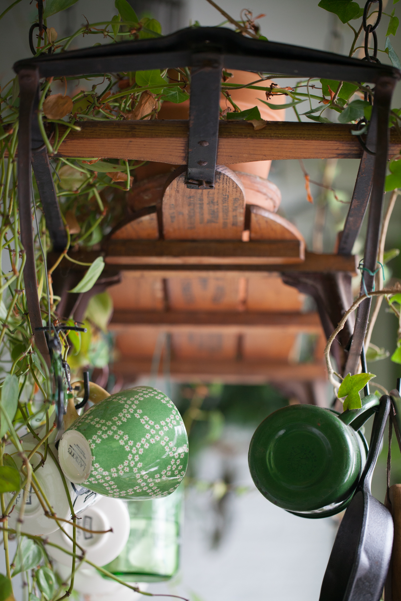 """I like when """"living art"""" is multifunctional. The flexible flyer not only serves as a plant shelf, but it's a useful way to keep my pots, pans and cups on hand for cooking."""