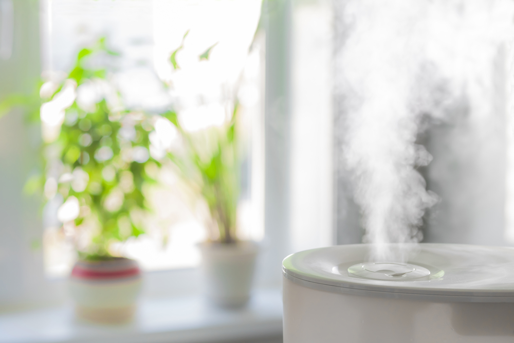 Humidifiers generally run in the $30-$250 price range, and are highly effective at bringing up humidity levels in the home. I ended up purchasing a BONECO ultrasonic humidifier and a smaller VicTsing humidifier for my plants.