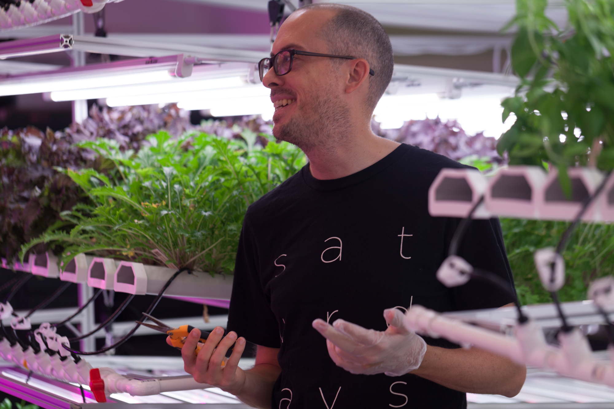 """""""I knew I wanted to do something with food; something I actually cared about and got excited about every day,"""" Rob Laing of Farm One shared with me in this Homestead Brooklyn interview."""
