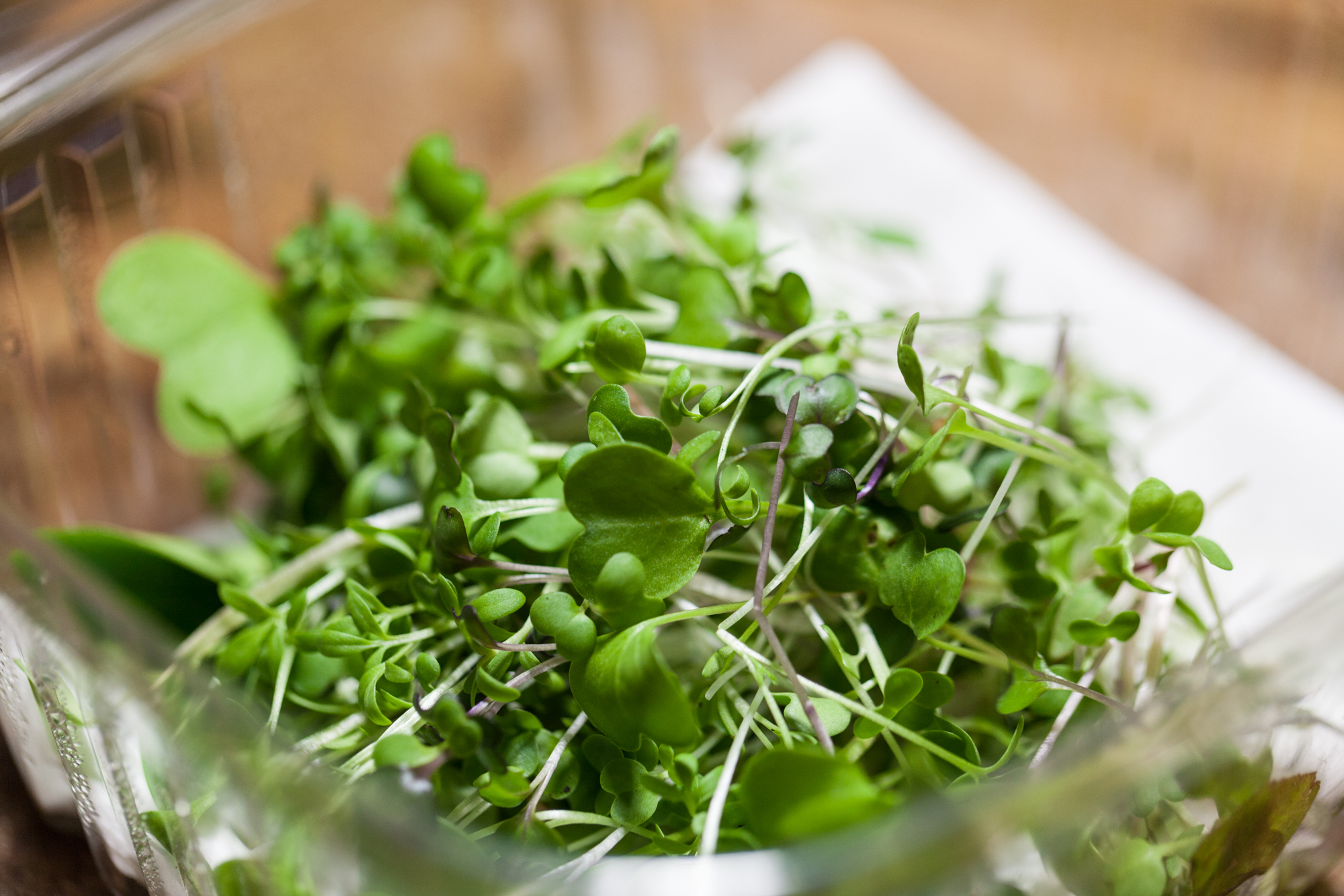 An example of one of my weekly harvests. All microgreens here were grown in my closet garden! Photo:Photo: @HomesteadBrooklyn