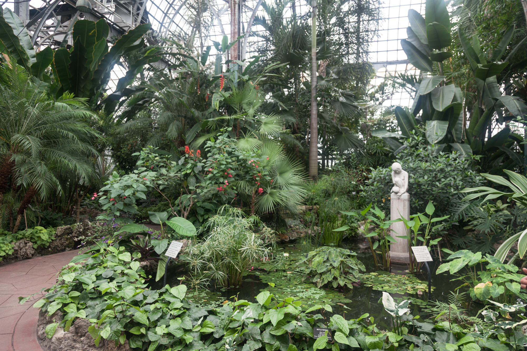 As you walk into the Conservatory, you're met with a pond, statue, and lush scenery.